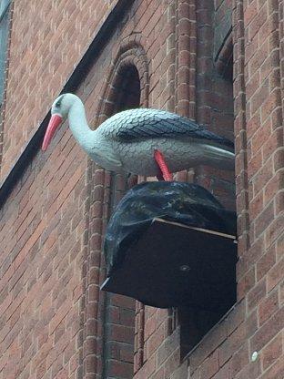 Storch im Mach mit Museum