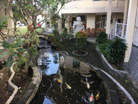Ein Teich im Innenhof der Bumi Sehat Foundation auf Bali